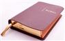9789065393937-bijbel-hsv-edge-lined