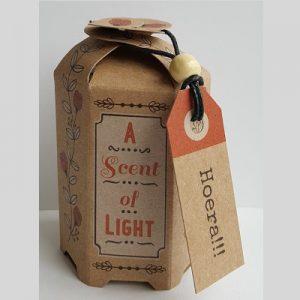 Scense of light Hoera